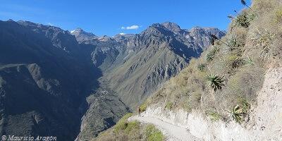 Arequipa Colca Canyon Trek 3 Days