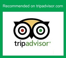 Trip Advisor Recommendation