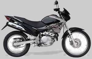 Honda Falcon NX