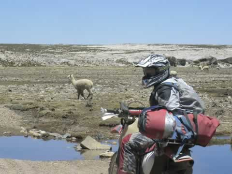 Peru Motorbikes