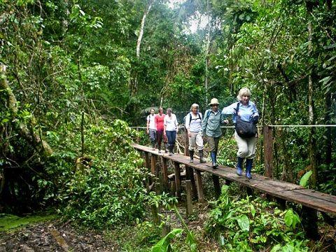 Puerto Maldonado 4 Days Ecological Trips To Peru Monkey
